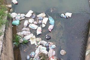 Phú Thọ: Trạm bơm tiêu 258 tỷ đặt ở nơi chưa bao giờ xảy ra úng ngập?