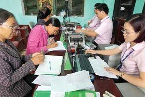 Tín dụng chính sách 'nuôi dưỡng' nhiều trang trại ở Hưng Yên