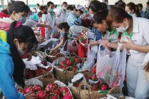 Lối thoát cho nông nghiệp Việt