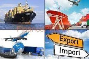 Tổng kim ngạch xuất, nhập khẩu hàng hóa nửa đầu tháng 2/2020 đạt 19,23 tỷ USD
