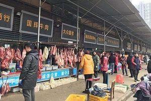 Chuyên gia Trung Quốc: 'Covid-19 không bắt nguồn từ chợ hải sản Vũ Hán'