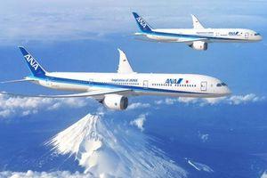 Vì sao hãng hàng không 5 sao Nhật Bản tăng cường hàng loạt máy bay Boeing 787 Dreamliner?