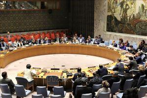 Việt Nam tái khẳng định sự ủng hộ mạnh mẽ đối với Hiệp ước Không phổ biến vũ khí hạt nhân
