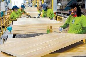 Dịch Covid-19 ảnh hưởng ra sao đến ngành gỗ Việt Nam?