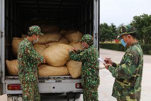 Thu giữ hơn 4 tấn ngao biển vận chuyển trái phép sang Trung Quốc