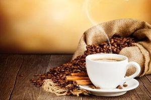 Giá cà phê hôm nay 28/2: Dao động trong khoảng 31.300 – 31.700 đồng/kg