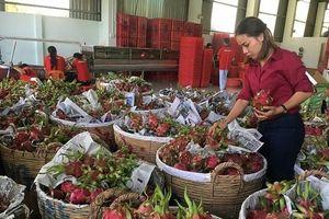Chuyển hướng thị trường tiêu thụ trái cây