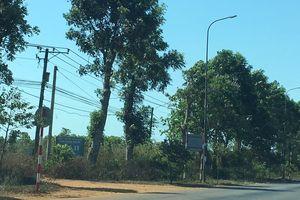 Sau cơn 'sốt đất' bất thường, Bình Ba trở về vắng lặng