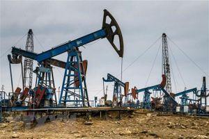 Giá dầu WTI trong tuần giảm mạnh nhất trong hơn một thập kỷ qua