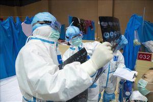 Dịch viêm đường hô hấp cấp COVID-19: Virus SARS-CoV-2 chủ yếu gây tổn thương phổi