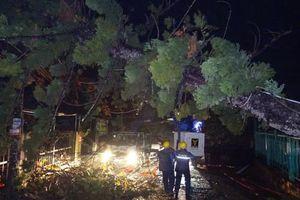 Điện lực miền Bắc khắc phục thiệt hại nặng do mưa đá, giông lốc