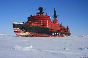 Ngành dầu khí Nga được yêu cầu sử dụng đội tàu của Nga