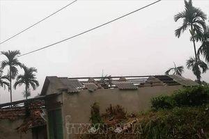 Trên 300 ngôi nhà ở Sơn La bị hư hại do mưa đá, dông lốc
