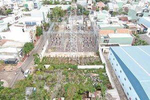 Hành lang lưới điện cao áp tại Bình Định: Báo động tình trạng mất an toàn
