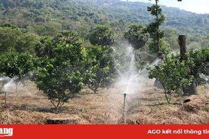 Sử dụng nước tưới trong mùa khô