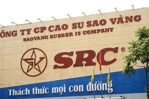 Cao su Sao Vàng bắt tay Hoành Sơn lập doanh nghiệp săm lốp vốn 500 tỷ đồng