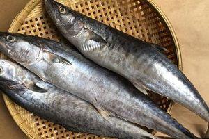Mẹ Hà Nội chia sẻ 6 mẹo chọn cá biển cấp đông không hóa chất, tươi ngon như cá tươi