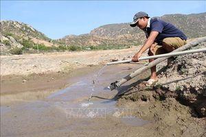Khô hạn, xâm nhập mặn có khả năng lan rộng tại các tỉnh ven biển Trung Bộ