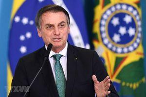 Hãng tin RT: Gia đình Tổng thống Brazil bác tin ông Jair Bolsonaro dương tính với virus SARS-CoV-2