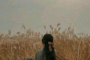 Mái tóc của người tôi thương trong chiều gió