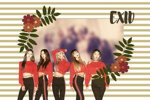 Fan 'rưng rưng' khi đã lâu mới được nhìn thấy EXID đầy đủ 5 thành viên nhân sự kiện đặc biệt