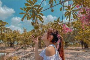 Nhà vườn rộng 20.000 m2 ở Đồng Nai của Minh Hằng