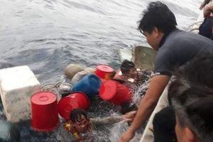 Tàu chìm, nhóm ngư dân ôm can nhựa lênh đênh trên biển