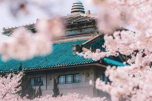 Vũ Hán gửi lời tri ân 'Cảm ơn vì có bạn' qua loạt ảnh du lịch