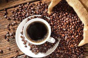 Tại sao thế giới thức dậy với cà phê Việt Nam?