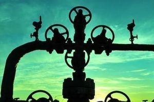 Giá dầu sụp đổ, Nga tiến vào thị trường khí đốt châu Âu?