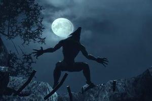 Bí ẩn những lần xuất hiện của người sói gây chấn động lịch sử