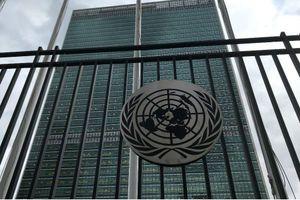Liên Hiệp Quốc họp trực tuyến ứng phó dịch COVID-19
