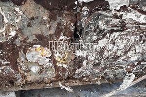 Chặn vụ nhập khẩu hàng chục tấn bản cực ắc quy chì thải loại tại cảng Hải Phòng
