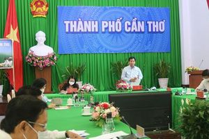 Giám đốc NHNN Cần Thơ: 7.700 tỉ cho vay xuất khẩu gạo như 'ngàn cân treo sợi tóc'