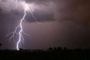 Đắk Nông: Trú mưa dưới tán cây, hai cha con bị sét đánh thương vong