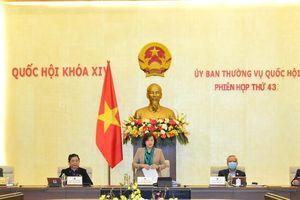 Phê chuẩn kết quả bầu Trưởng Đoàn ĐBQH Thái Bình, bổ nhiệm lại Phó Tổng kiểm toán