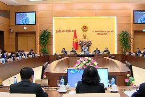 Ủy ban Thường vụ Quốc hội ban hành các Nghị quyết về công tác nhân sự