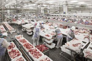 Thịt lợn Nga ồ ạt về Việt Nam... ông lớn CP, Masan bất lợi như nào?
