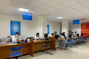 Hà Nội: Lượng nộp hồ sơ quyết toán thuế online tăng mạnh, đạt 85% dự kiến