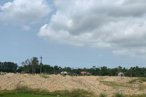 San lấp trái phép ruộng lúa của dân, doanh nghiệp bị phạt 300 triệu đồng