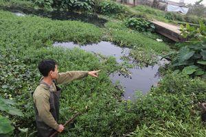 Nước sông Gòng ô nhiễm bất thường