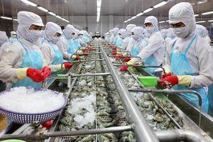 Hàng loạt đơn hàng cá, tôm bị khách nước ngoài hủy mua