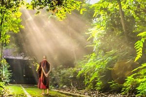 Phật dạy 8 chữ 'vàng' nên 'gối đầu giường' để tu dưỡng bản thân mỗi ngày