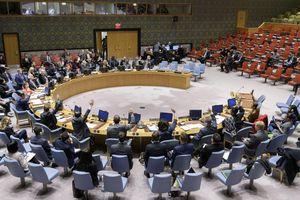 Hội đồng Bảo an lần đầu tiên thông qua các nghị quyết theo thủ tục đặc biệt