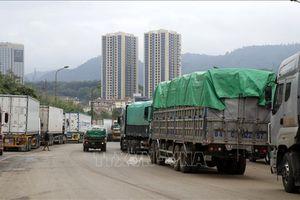 Ách tắc cục bộ hàng hóa tại cửa khẩu Lào Cai