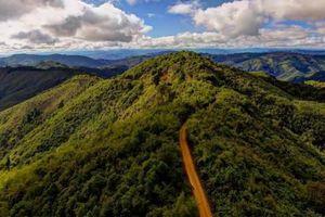 Hỏa hoạn nghiêm trọng ở Lào thiêu hủy 10.000 hecta rừng