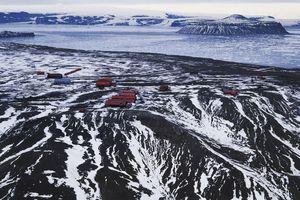 Phát hiện dấu tích rừng mưa 90 triệu năm tuổi dưới băng Nam Cực