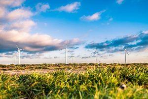 Kỷ lục: Lượng khí thải CO2 giảm xuống mức thấp nhất kể từ Thế chiến II 'nhờ' Covid-19