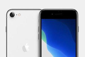 iPhone SE 2020 giá rẻ sắp trình làng có gì đáng mong đợi?