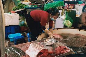 Hải sản giảm giá giữa mùa dịch COVID-19, dân vẫn thờ ơ